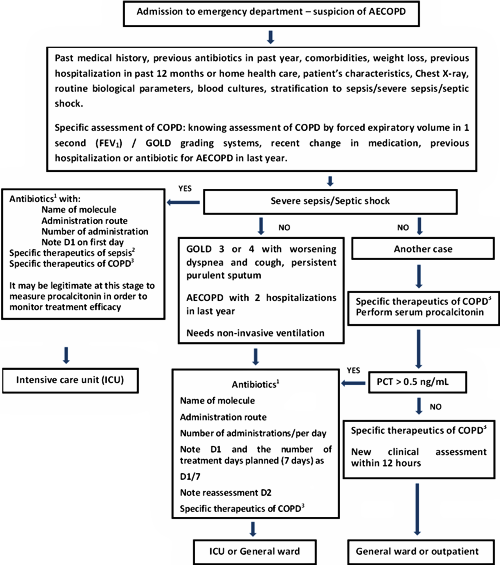 Procalcitonin used in the emergency room fig 4 decision making in acute exacerbation of chronic obstructive pulmonary disease aecopd simplified procedure based on the procedures from the sciox Images